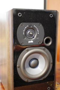 Detail of ring radiator tweeter and front panel